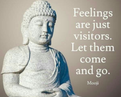 Feelings are Visitors